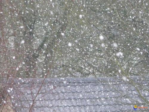 Virevolte la neige...
