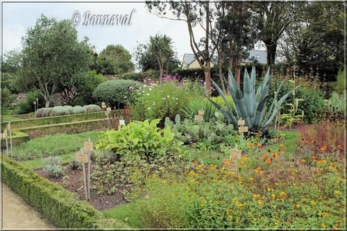 Abbaye de Daoulas Finistère le jardin de plantes médicinales, exotiques et condimentaires