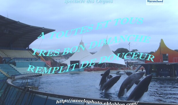 REFLEXION DE LA SEMAINE    11/05/2014