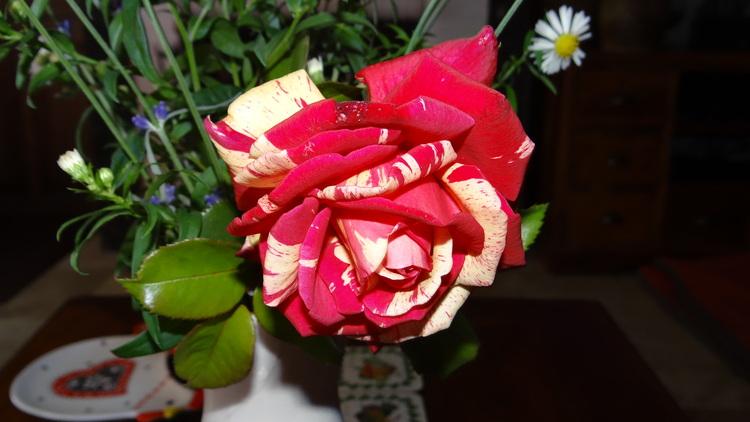 Quelques Nouvelles de Nous Deux + Bouquet de fin de Semaine