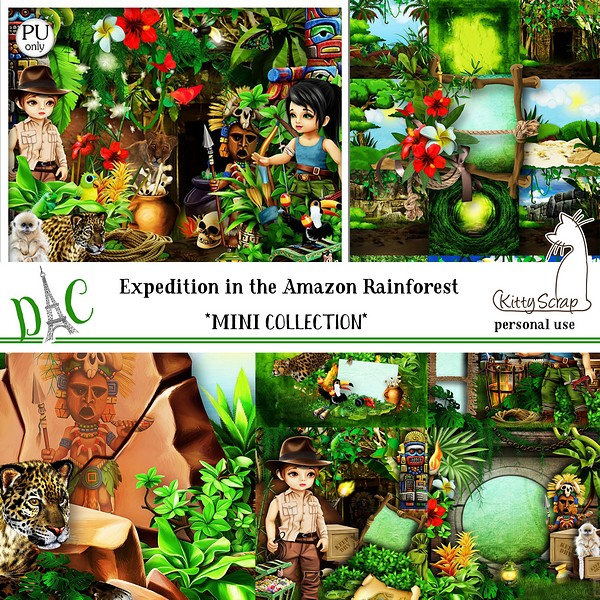 Mini collection expedition in the Amazo rainforest de kittyscrap