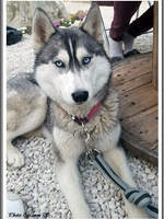 Mayka (20 mois)
