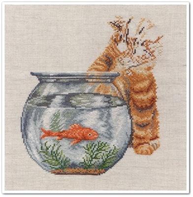 Le chat et le poisson rouge 9