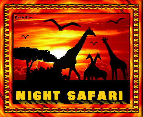 Safari Tag - Mar-Designs
