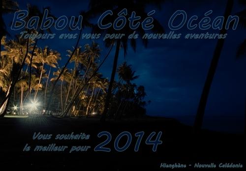 Babou Côté Océan vous souhaite une excellente année 2014 - Cliquer pour agrandir.