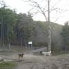 PENA DE OROEL 19 03 2011