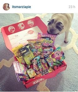 FAVORIS | Instagram Juin 2015 - Youtubeur / Youtubeuse
