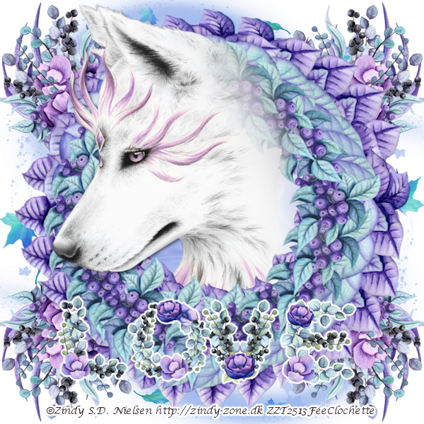 Love of the white wolf
