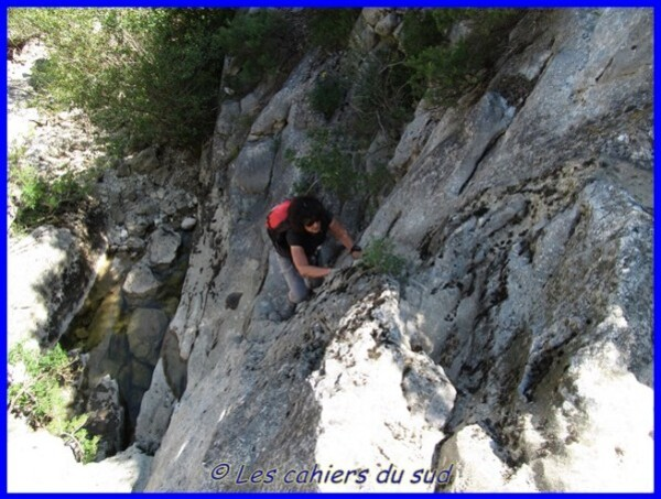 ravin-des-encanaus-06-2014 0280 [640x480]