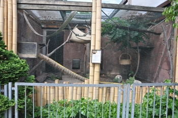 zoo allemagne2 290