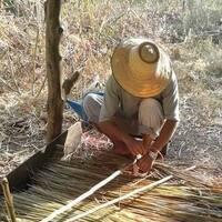 Thaïlande : Pur Isan ! La page facebook de ของดี-ศรีสะเกษ (Sisaket) !