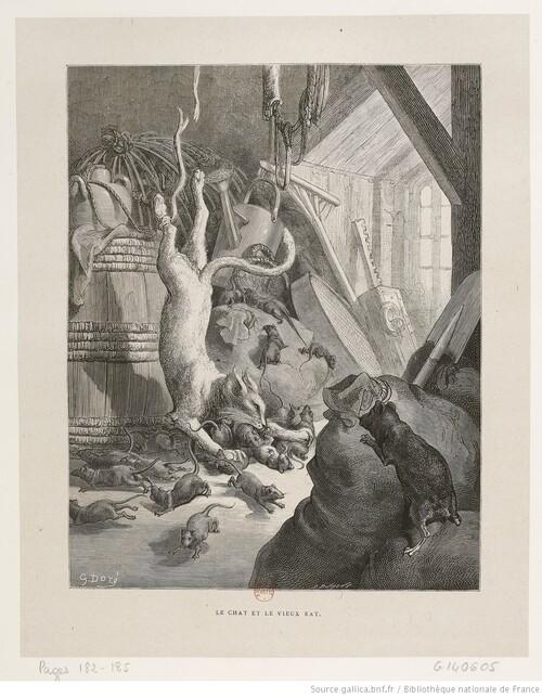 Esope, La Fontaine, Lucchini : Le chat et un vieux rat