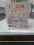 "Exposition des costumes de ""LILIUM -Lilium Shoujo Junketsu Kageki- "" au Hello! Project Store"
