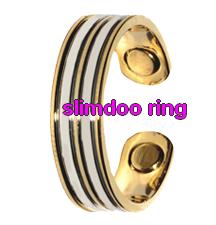 Silver Ridgeline