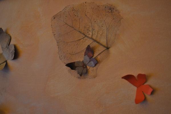 Papillons pour décorer les murs