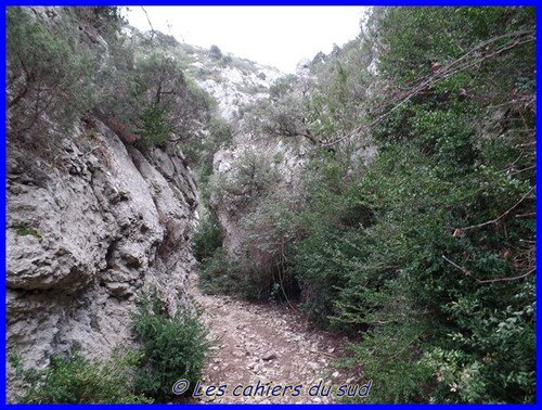 Les gorges du Regalon