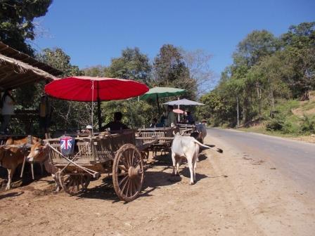 Chiang Mai - une journée avec les éléphants