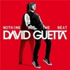 david-guetta-nothing-but-the-beat-nouvel-album-2011