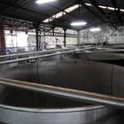 Les immenses cuves de fermentation - 2
