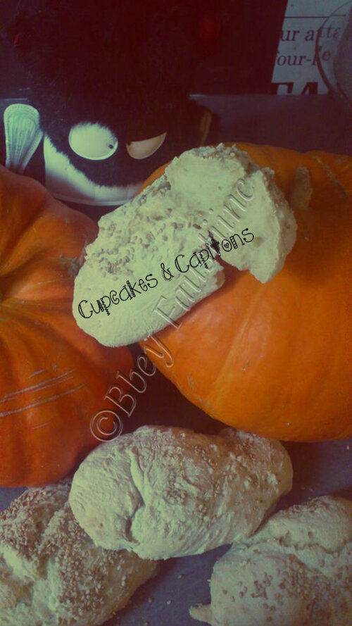 Petits pains sans pétrissage ,le pain des feignasses ^^