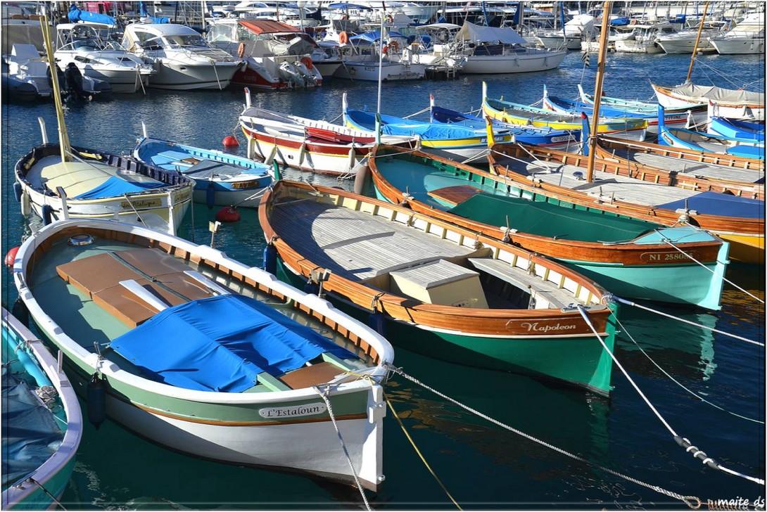 Dans le port de Nice