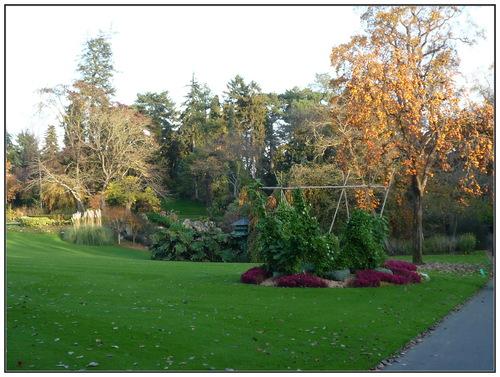 Jardin d'automne.