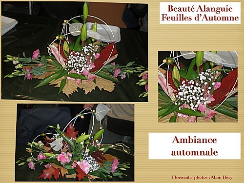 2012 10 23 beaute alanguie (6)