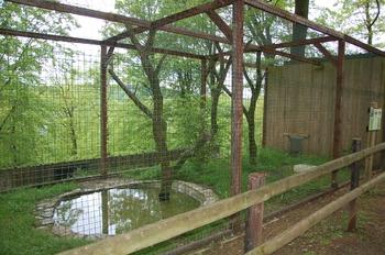Parc animalier Bouillon 2013 enclos 180