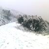Tarikt en hiver