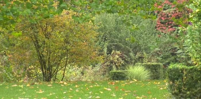 Jardin Jardinier : Les Jardins de Séricourt