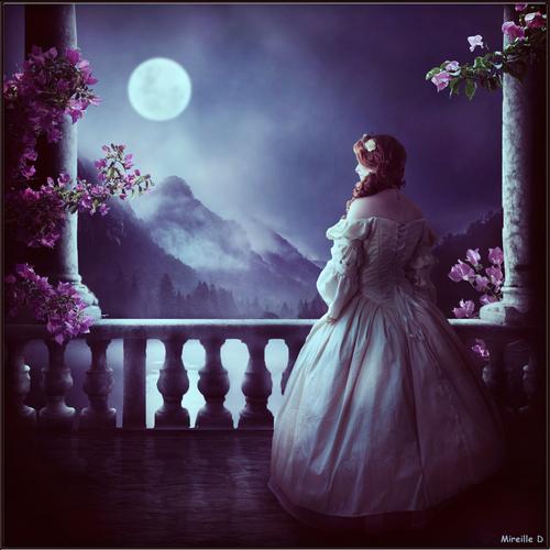 Scène Romantique au Clair de Lune