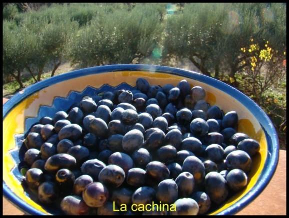 olives-noires--17-.JPG