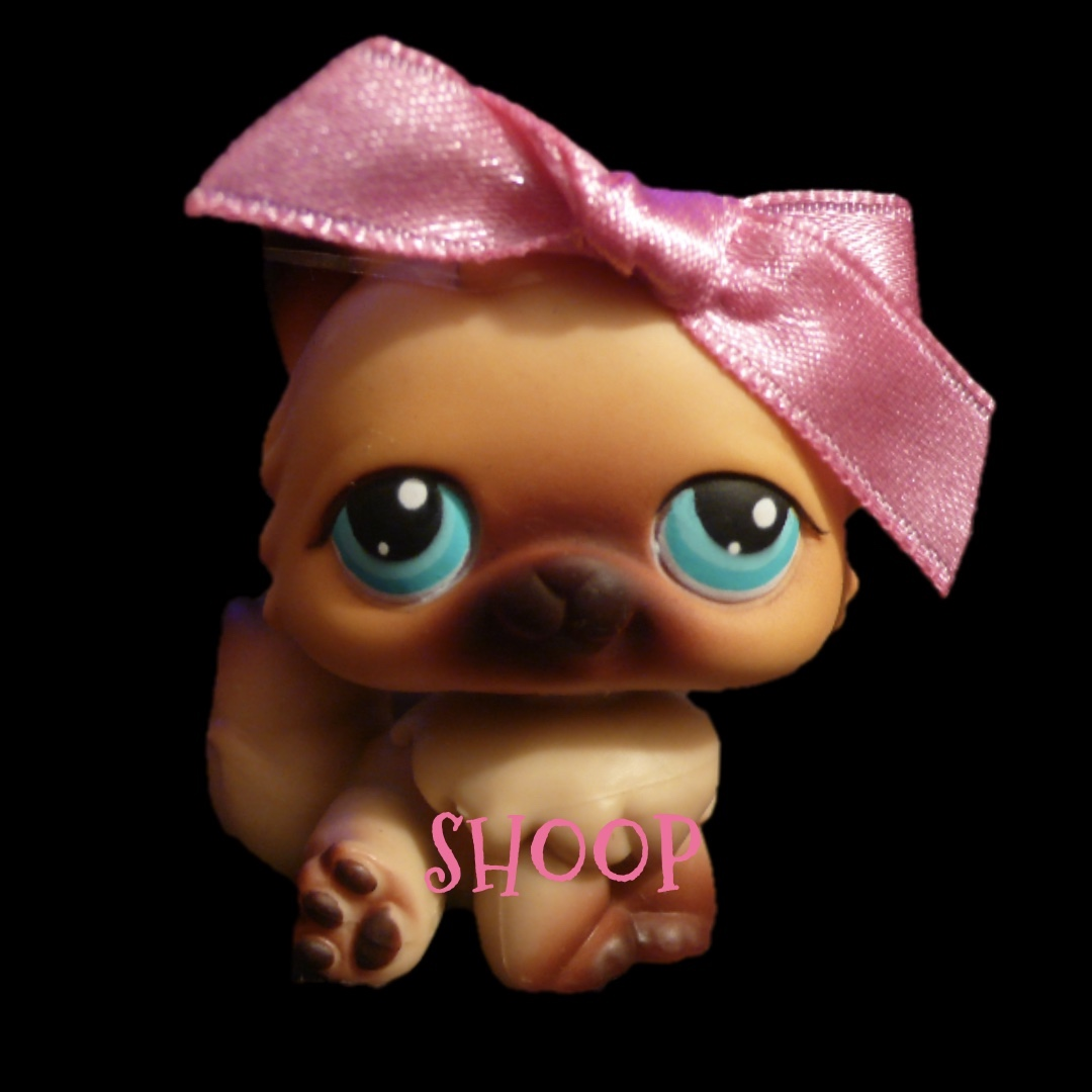 LPS 22