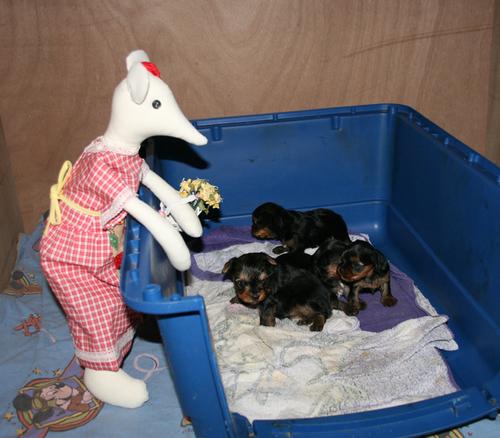Bertille en visite à la maternité