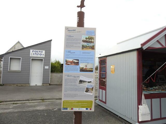 Phoques de la baie de Somme
