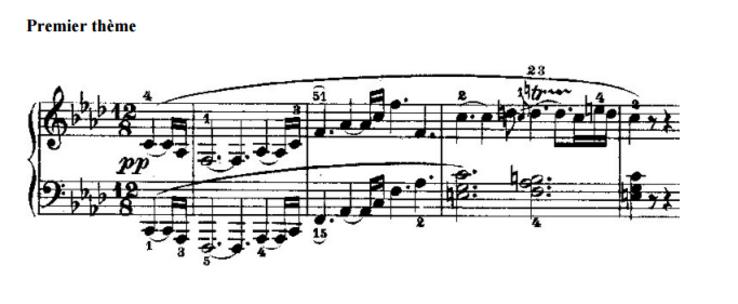 """Concerto """"APPASSIONATA"""" de Beethoven et anecdotes"""