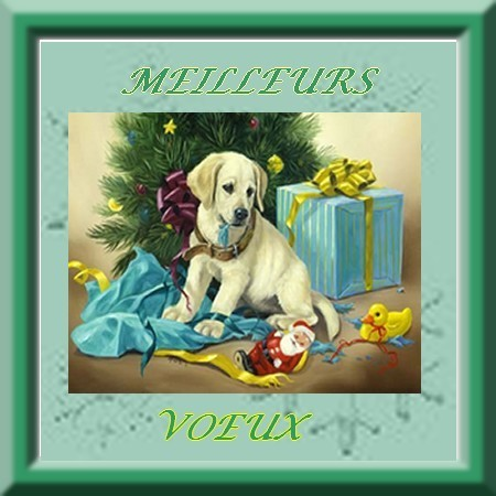 MEILLEURS-VOEUX.jpg