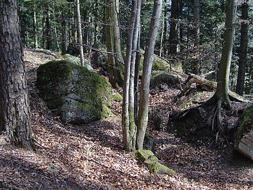 roche pierre piquee neuvevoie derzognier 078