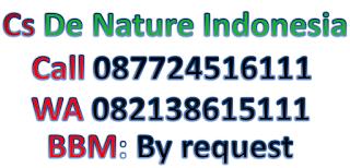 Obat sipilis alam alami
