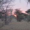 Mauritanie Sur la route de l'Espoir Lever du soleil