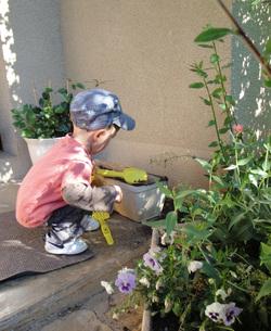 Les fleurs de Louis le petit jardinier