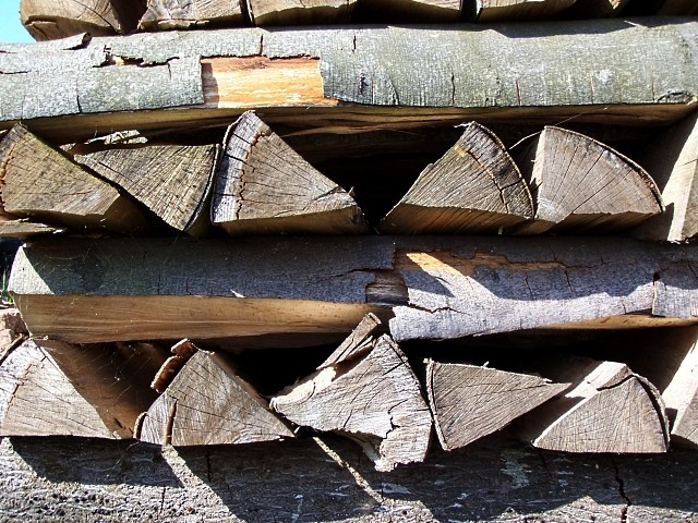 Le tas de bois de Metz 2 mp1357 2011
