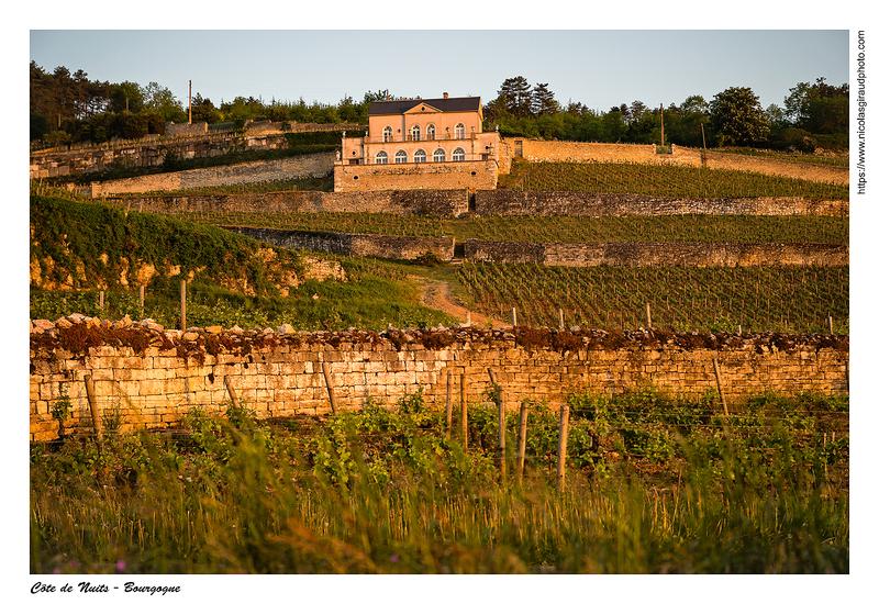 Des côtes de Nuits aux côtes de Beaune en Bourgogne