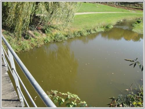 Le ptit moulin et son cours d'eau