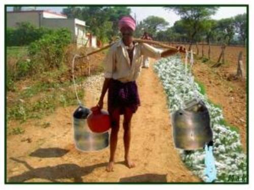 Un porteur d'eau indien avait deux jarres...