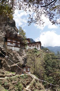 De Dzongs en Shortens