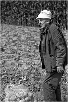 Le ramasseur de pommes de terre