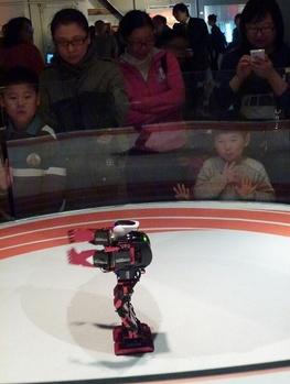 Robot Taï-chi