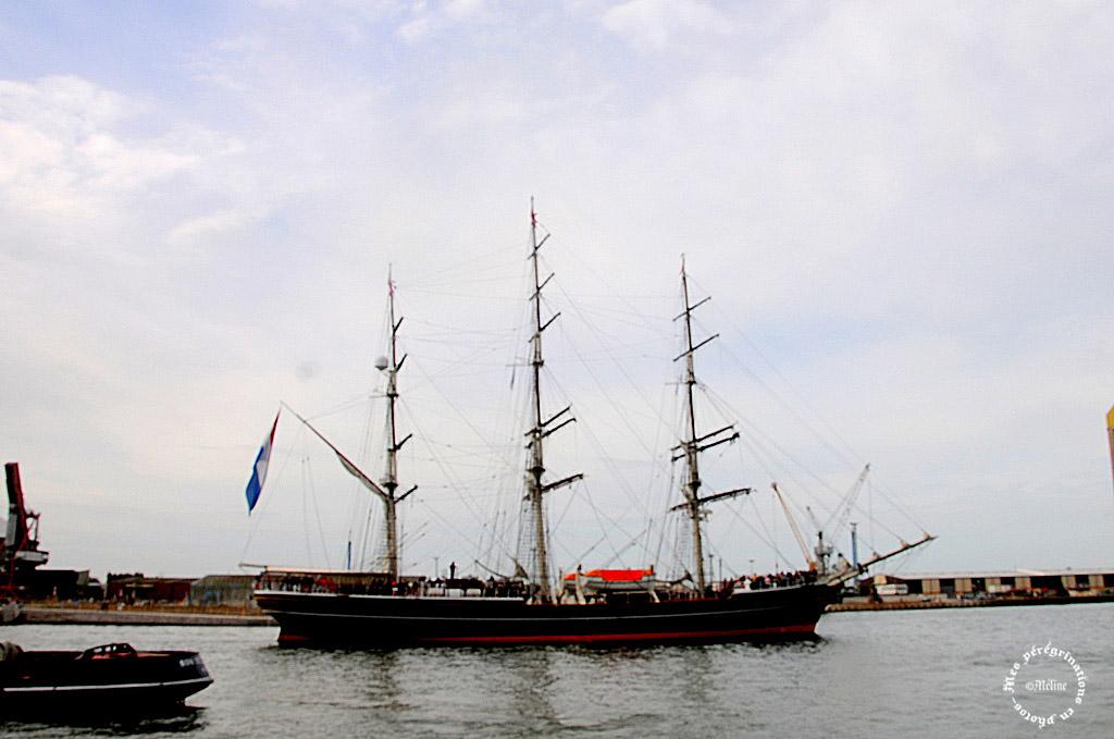 L'Armada des Voiliers et des hommes - ROUEN (10)