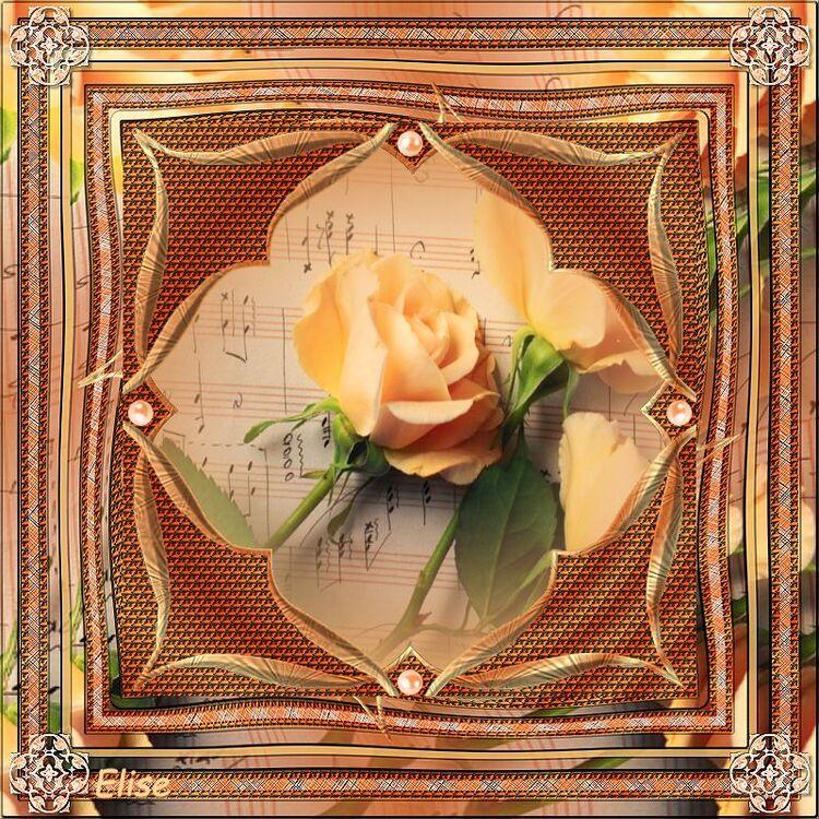 Ma fleur favorite de Denise chez Franie